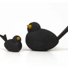 Fåglar svarta